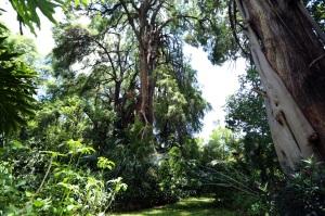 Retiro de Silencio, CasaCuatroRumbos 32, julio 2014